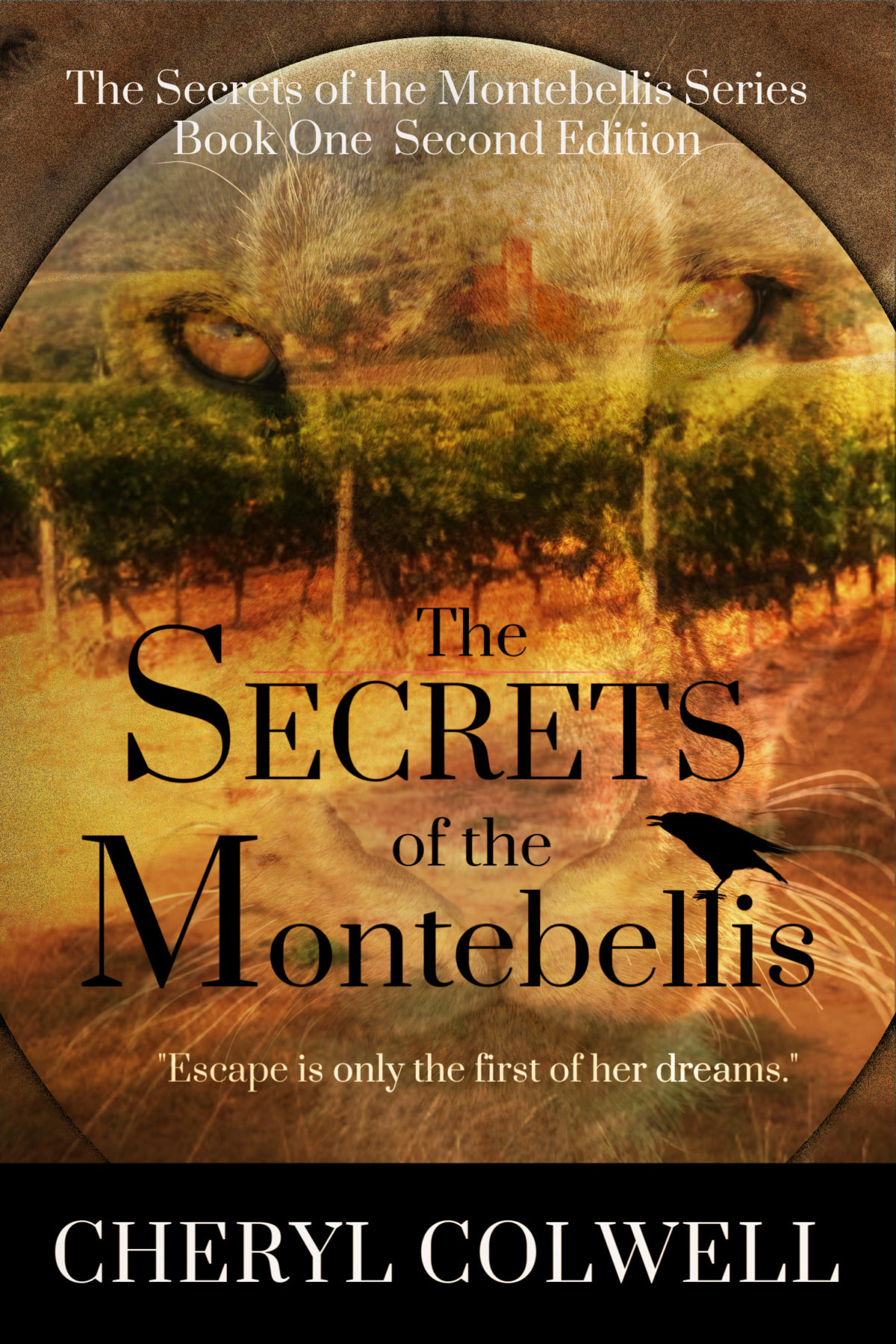 Secrets of the Montebellis Book Cover